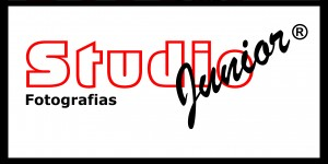 Logo Studio 40x20