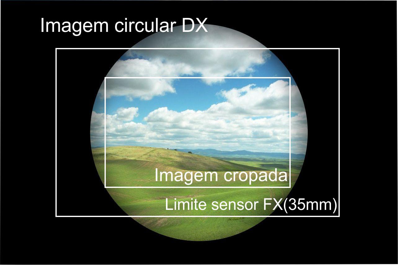 imagem dx